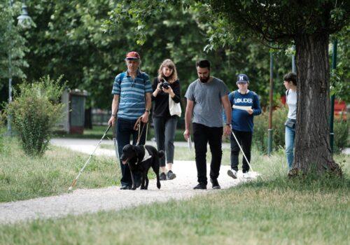 Imagine din parc cu doi participanți plimbându-se pe o alee. Unul dintre aceștia are un câine ghid și un baston, iar al doilea un baston. Aceștia vorbesc fiecare cu câte un voluntar.