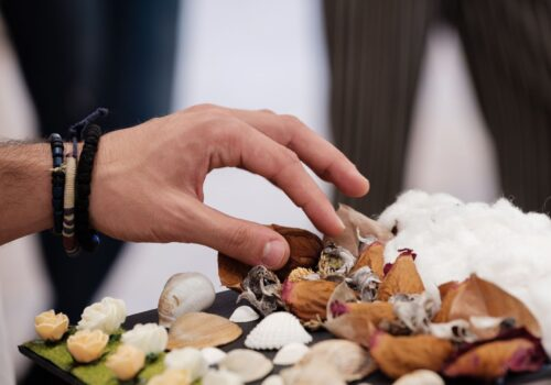Un participant explorează textura unor flori uscate.